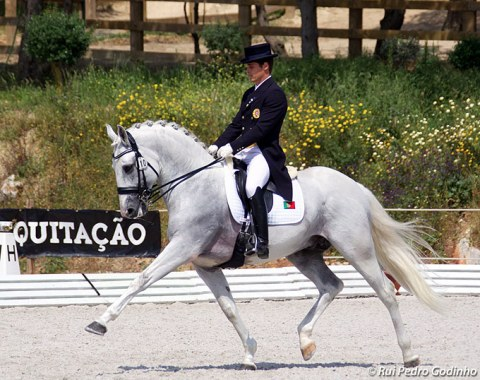 Portuguese Team for 2018 World Equestrian Games Selected