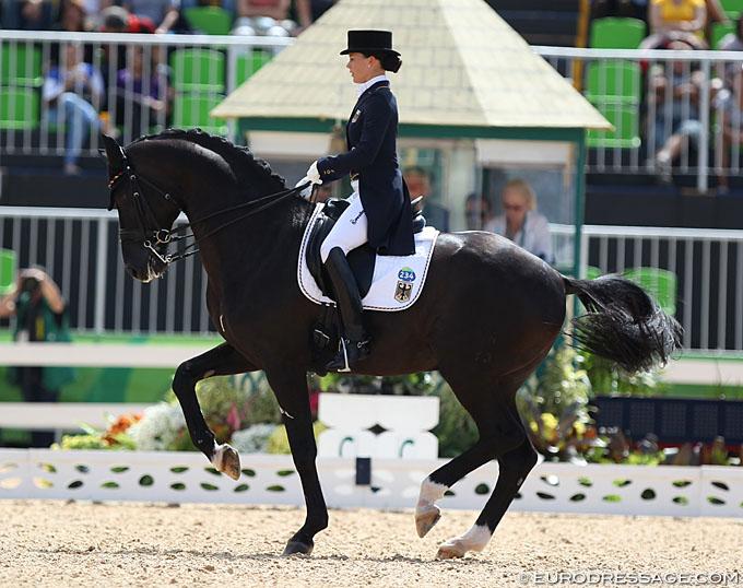 Desperados German Medal Winning Stallion Died Unexpectedly