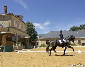 Dressage at the Pompadour state stud :: Photo © Terri Miller