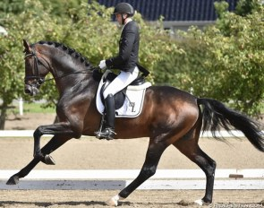 Andreas Helgstrand and the auction record price horse Revolution :: Photo © Ridehesten