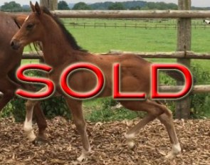 SOLD in 2 weeks time !!