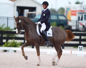 Oded Shimoni competing at the CDN Wellington in Florida :: Photo © Astrid Appels