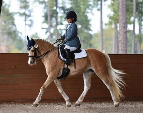 Meghan Benge on Welsh pony Zoey (by The Key x Rhystyd Flyer) :: Photo © Nicole McNally
