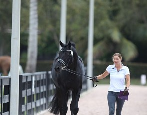 Susan Pape and Don Nobless walking towards the horse inspection at the 2020 CDI 5* Wellington :: Photo © Astrid Appels