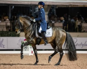 Australian Nicholas Fyffe on the American bred PRE Fiero HGF at the 2020 USPRE Week in Wellington :: Photo © Lily Forado