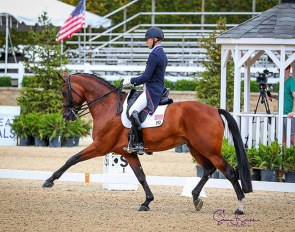 Endel Ots and Sonnenberg's Everdance at the 2020 U.S. Dressage Championships :: Photo © Sue Stickle