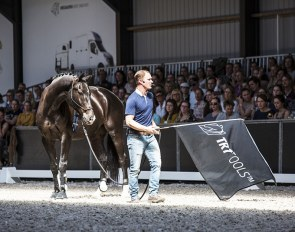 Tristan Tucker demonstrating the TRT method at the DressagePro Masterclass in The Netherlands