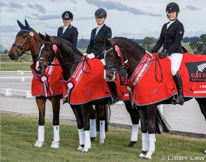 The 2020 New Zealand Young Horse Champions: NSC Furst Rock DW, Dance Hit SW, and Feuer Tanz :: Photo © Libby Law