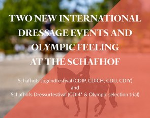 Two CDI's at the gorgeous Gestüt Schaf in the summer of 2021: Schafhof's Youth Festival and Schafhof'ss Dressage Festival