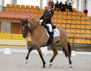 FS Daddy's Sunshine at the 2020 CDI Alter do Chao