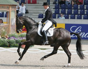 What a hindleg!! Anne van Olst's Dutch warmblood Taikoen (by Negro) has a super charged engine behind!
