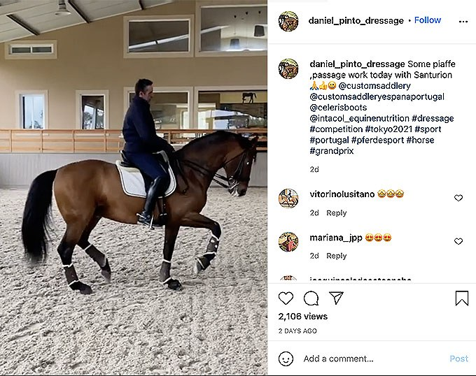 Portuguese team rider Daniel Pinto showcasing a video clip on social media of his top GP horse Santurion de Massa being trained at home. Pinto was one of the protagonists leading the pro-choice debate helmet/top hat last year.