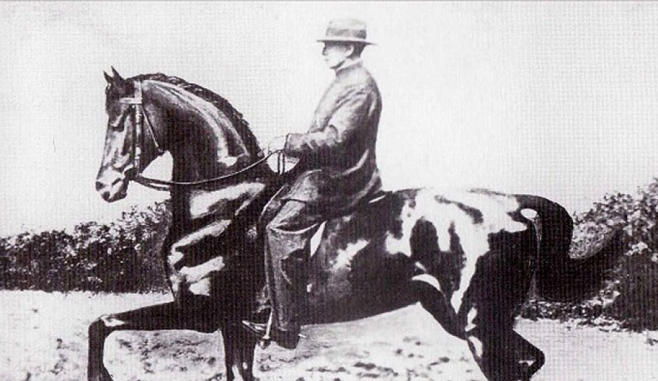 Beudant on Vallerine, an Anglo-Arab mare he trained when he was practically an invalid
