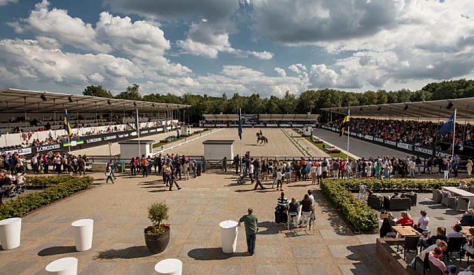 The FEI World Breeding Championships for Young Dressage Horses in Ermelo