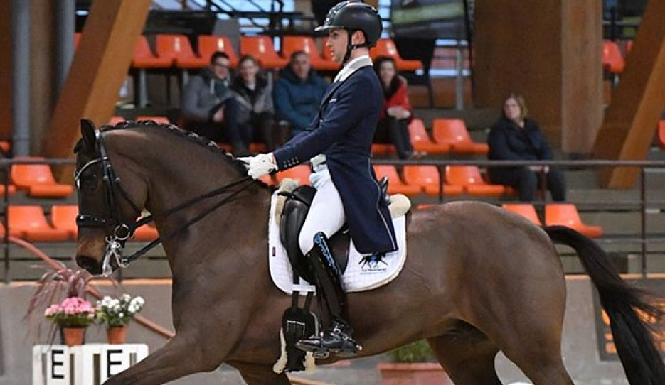 Sonnar Murray-Brown on Erlentanz at the 2020 CDI Le Mans :: Photo © Les Garennes