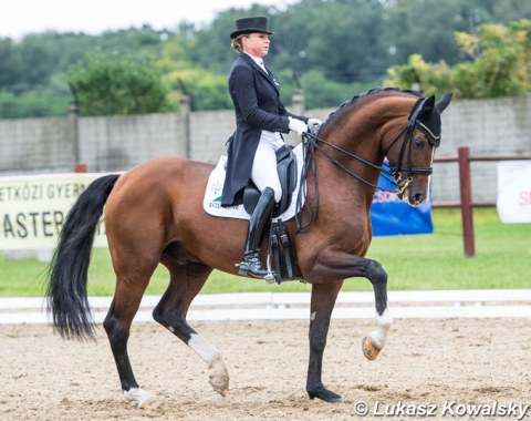 Dorothee Schneider on her new ride, Quadriga's Don Cismo