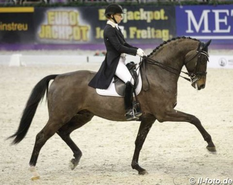 Susan Pape on Harmony Sport Horses' Eclectisch (by Zenon x Olivi)