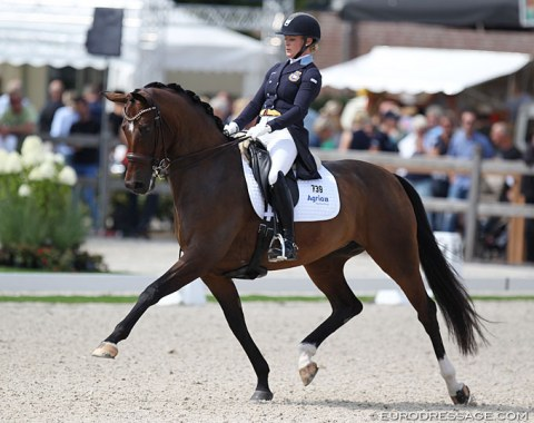 Jeanna Hogberg on the Swedish warmblood mare Astoria. This is the best performing offspring by international Grand Prix horse Sir Donnerhall II so far