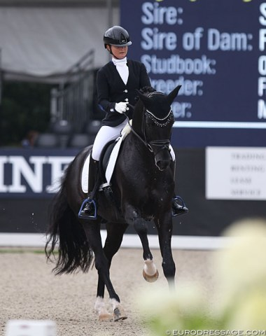 Mandy Zimmer on the talented Symphony MZ (by Sir Donnerhall x Furst Heinrich)