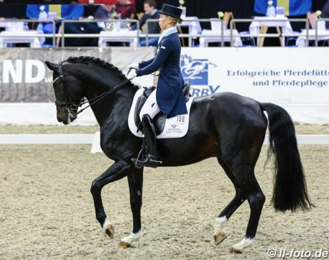 Therese Nilshagen and For Romance I in the Louisdor cup qualifier