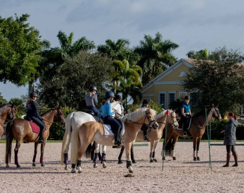 Working equitation was this year's highlight of the 2020 USPRE Week