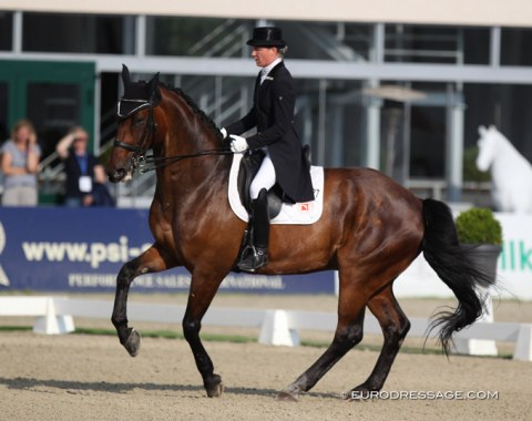 Swedish Christina Pantzar on Sofie Reef's 17-year old Hanoverian Silencium (by Shakespeare in Love x Wolkenstein II)