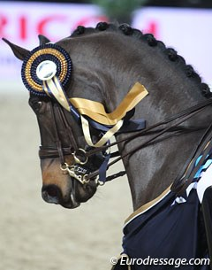 Deja with a Mechelen show ribbon