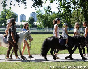 Pony rides in the park