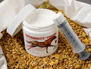"Phenylbutazone (also known as ""bute"") is the most used painkiller for horses"