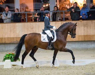Renate van Vliet and In Style at the 2017 KWPN Stallion Competition in Ermelo :: Photo © Digishotsh