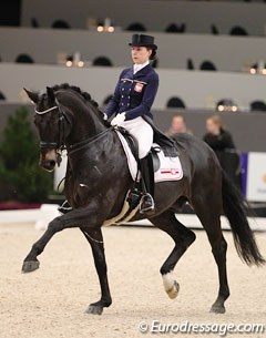 Beata Stremler and Rubicon D at the 2014 CDI-W 's Hertogenbosch :: Photo © Astrid Appels