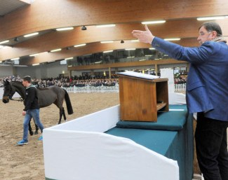 Auctioneer Volker Rauf selling the Ruter horse stock at auction :: Photo © Thoms Lehmann