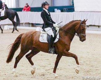 Yvonne Henke and Duraçao at the 2018 Munster Stallion Sport Test :: Photo © LL-foto