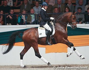 Connery at the Trakehner Stallion Licensing in 2012 :: Photo © Jutta Bauernschmitt
