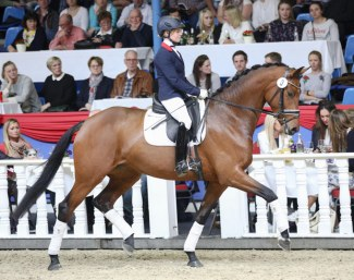 Karabella at the 2018 Oldenburg Spring Elite Auction :: Photo © LL-foto