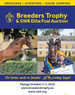 2018 Breeders Trophy and Swedish Warmblood Elite Foal Auction