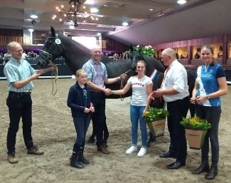 Mercedes Verweij buys Nina Ricci at the 2018 Midden-Nederland KWPN Foal Auction