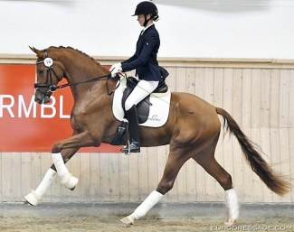 Silje Bakken and Grevens Fakina :: Photo © Ridehesten