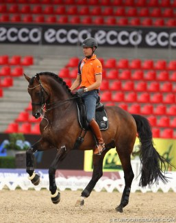Hans Peter Minderhoud schooling Romanov at the 2013 European Dressage Championships in Herning :: Photo © Astrid Appels