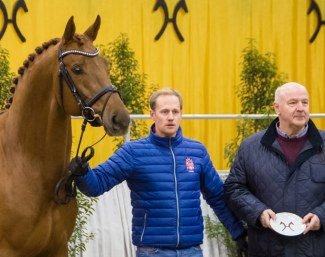 Destacado was awarded the Weltmeyer-Prize. His breeder Heinrich Gießelmann (right) received the prize, Matthias Alexander Rath presented the Vice World Champion of the five-year-old dressage horses in the Niedersachsenhalle.