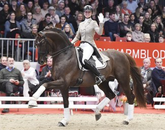 Lotte Skjærbæk on Skovens Rafael at the 2019 Danish Warmblood Stallion Licensing in Herning