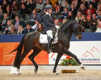 Jean-Rene Luijmes and Grappa at the 2018 KWPN Stallion Licensing :: Photo © Dirk Caremans
