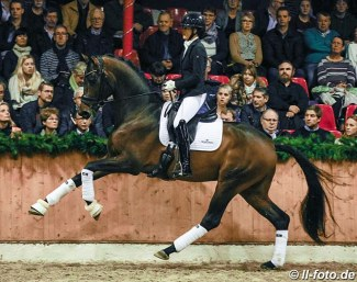 Anne-Mette Strandby Hansen and Dynamic Dream at the stallion show in Vechta on 2 February 2020 :: Photo © LL-foto