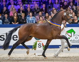 Monte Carlo (by Dream Boy x United x Jazz) :: Photo © Dirk Caremans