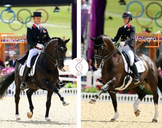 Get yourself the champions of Charlotte Dujardin and Carl Hester : Uthopia with the full sister of the Olympic Champion, Valegro!