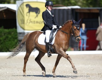 Cillian Curran on Blokland's Hoeve's Amor at the 2019 CDI Sint-Truiden :: Photo © Astrid Appels
