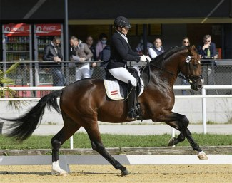Ulrike Prunthaller and Questero at the 2020 Austrian Warmblood Championships :: Photo © Team Myrtill