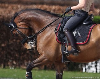 An example of rollkur/hyperflexion at the 2018 CDI Aachen :: Photo © Astrid Appels
