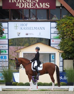 Rebecca Williams-O'Brien and Hollingrove Dazzler competing at the 2020 CDI Hagen at Hof Kasselmann :: Photo © Astrid Appels