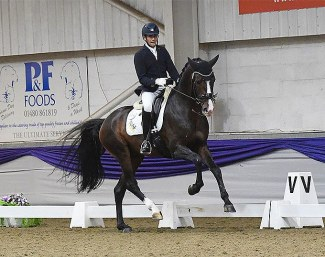 Tom Goode and Jaristo at the British team selection trial for the 2020 World Young Horse Championships